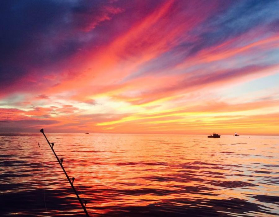 sunset boat tours wells harbor maine